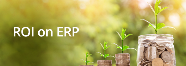 How do you calculate ERP implementation ROI