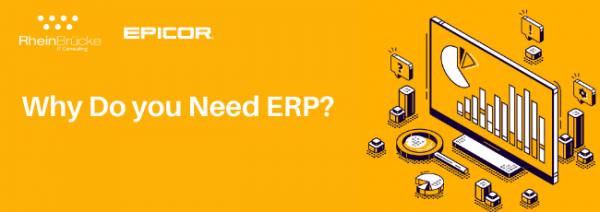 Need of an ERP